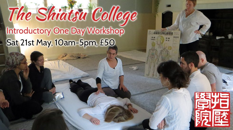Shiatsu Introductory Day May 2016