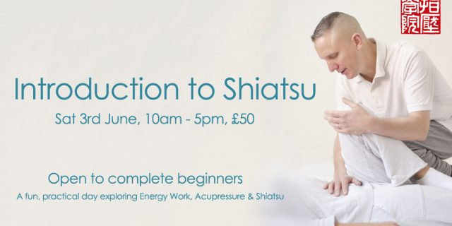 Shiatsu Intro Day 2017 June
