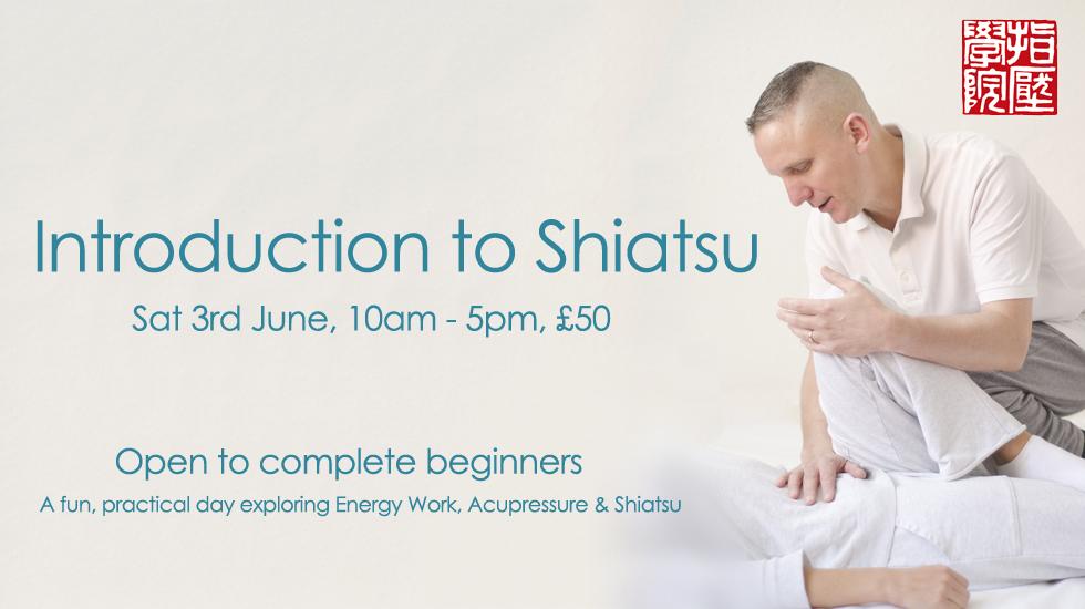 Shiatsu Intro Day 2017 June