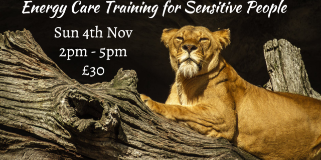 Energy Care Training for Sensitive people 2018-11