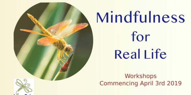 Mindfulness for Real Life 2019