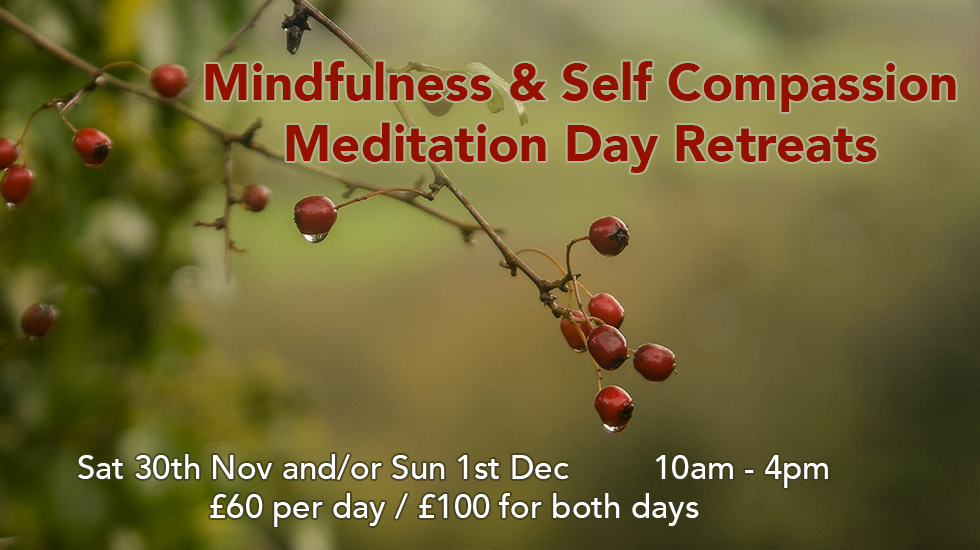 Banner for Mindfulness & Self-Compassion Meditation Day Retreats